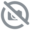 DEMON DETECTIVE CAMERA APPAREIL MINIATURE CHROME DE 1890 RARE